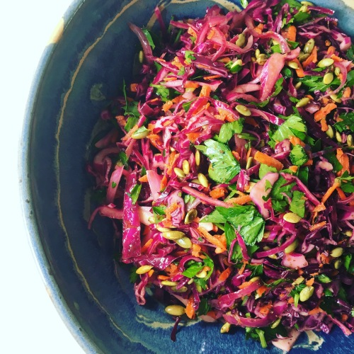 Pickled Red Cabbage Salad by loopylocks