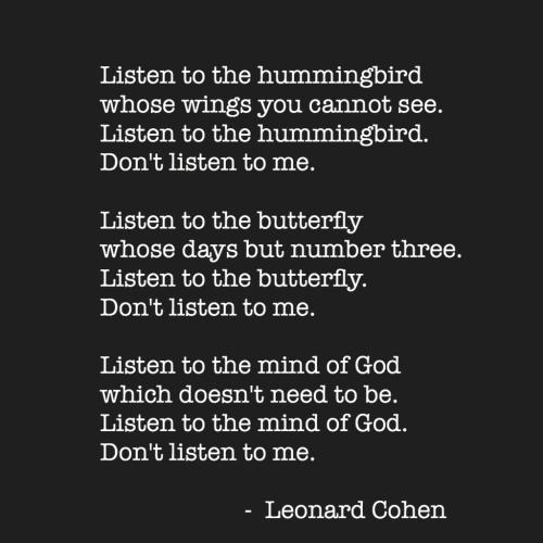 listen to the hummingbird by leonard cohen